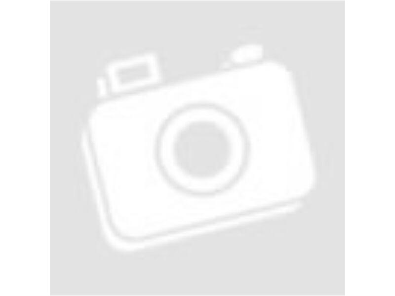 BMW hengerfej tömítés (2443 ccm)